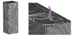 Swirling streamlines indicating existence of vortex above shear stress field sink (sink is located in lower right part of middle image)